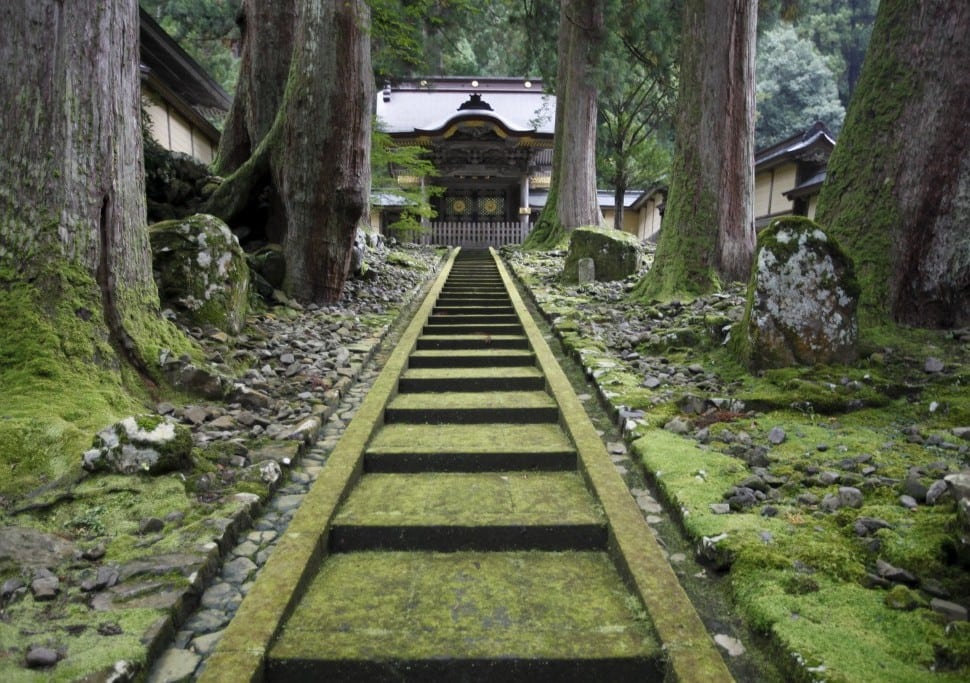 Japanese Temples Are Opening Their Doors to Foreign Tourists